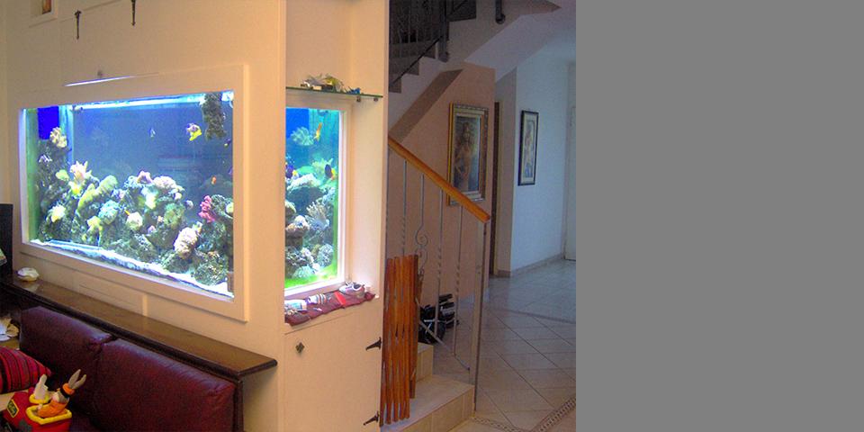 קיר מפריד בין הסלון, המטבח והמדרגות