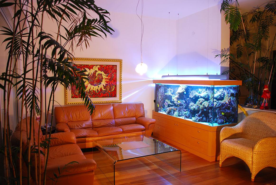 ריף אלמוגים עם מגוון דגים בסלון בגווני חום עם עציצים טרופיים